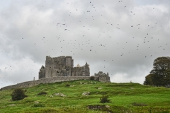 Rock of Cashel 1