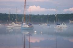 Annisquam Harbor Fog