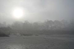 Beach in Fog 1