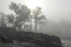 Beach in Fog 2