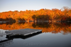 Fall Foliage on the Cove 1