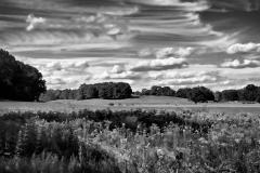 Hills & Fields