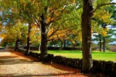 Stone Wall in Fall
