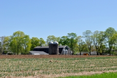 Milking Barn in May