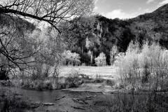 squam-creative-teele-arrow-river-spring-flowering-1