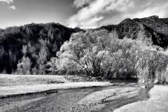 squam-creative-teele-arrow-river-spring-flowering-2