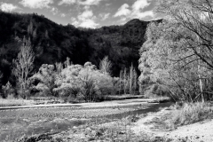 squam-creative-teele-arrow-river-spring-flowering-3