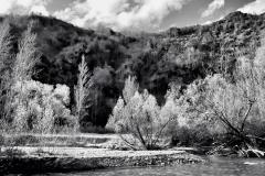 squam-creative-teele-arrow-river-spring-flowering-4