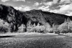 squam-creative-teele-arrow-river-spring-flowering-6