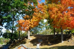 Cemetery in October 5