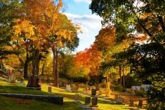 Cemetery & Road