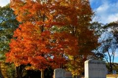 Cemetery  & Graves