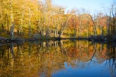 Reservoir Pond