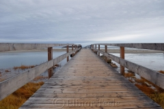 Good Harbor Footbridge 1
