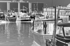 squam-creative-teele-harbor-cove-gloucester-bw-inversion-2
