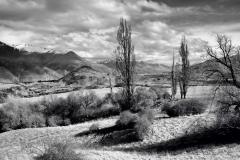 squam-creative-teele-crown-terrace-black-white-1