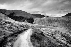 squam-creative-teele-sawpit-gully-track-back-country