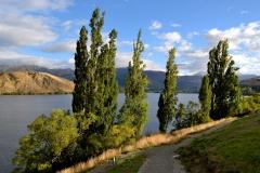 squam-creative-teele-lake-hayes-sunlight