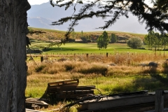 squam-creative-teele-on-the-farm-crown-terrace-2