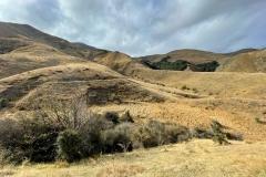 squam-creative-teele-sawpit-gully-view-big-hill-track