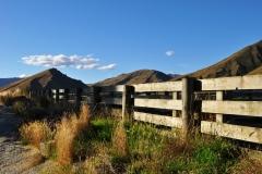 squam-creative-teele-sheep-yard-race-crown-terrace