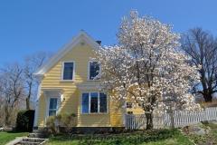 Lanesville in Bloom