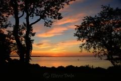 Ipswich Bay & Pasture Trees
