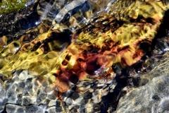 Rocks Underwater 1
