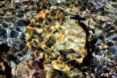 Rocks Underwater 16
