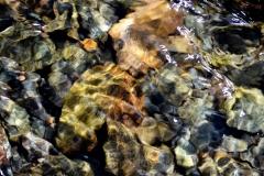 Rocks Underwater 20