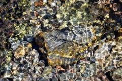 Rocks Underwater 4