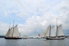 Parade of Sail 3
