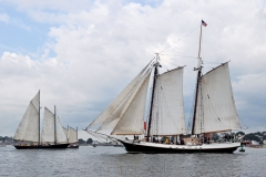 Parade of Sail 2