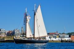 Adventure Setting Sail