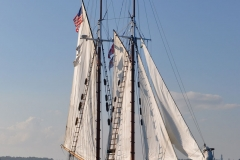 Thomas E. Lannon Harbor Sail 5