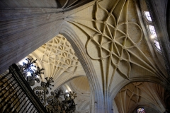 Catedral de Segovia Sunlight