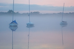 Catboats in the Fog