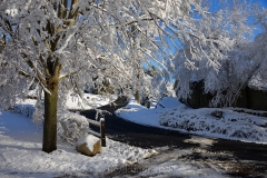 Adams Hill in February Snows