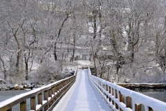 Footbridge in February