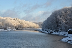 Head of the Cove in March Snows