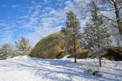 December Frosting 1