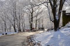 December Frosting 2