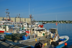 Gloucester Waterfront in July 3