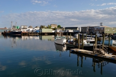Harbor Cove Reflections