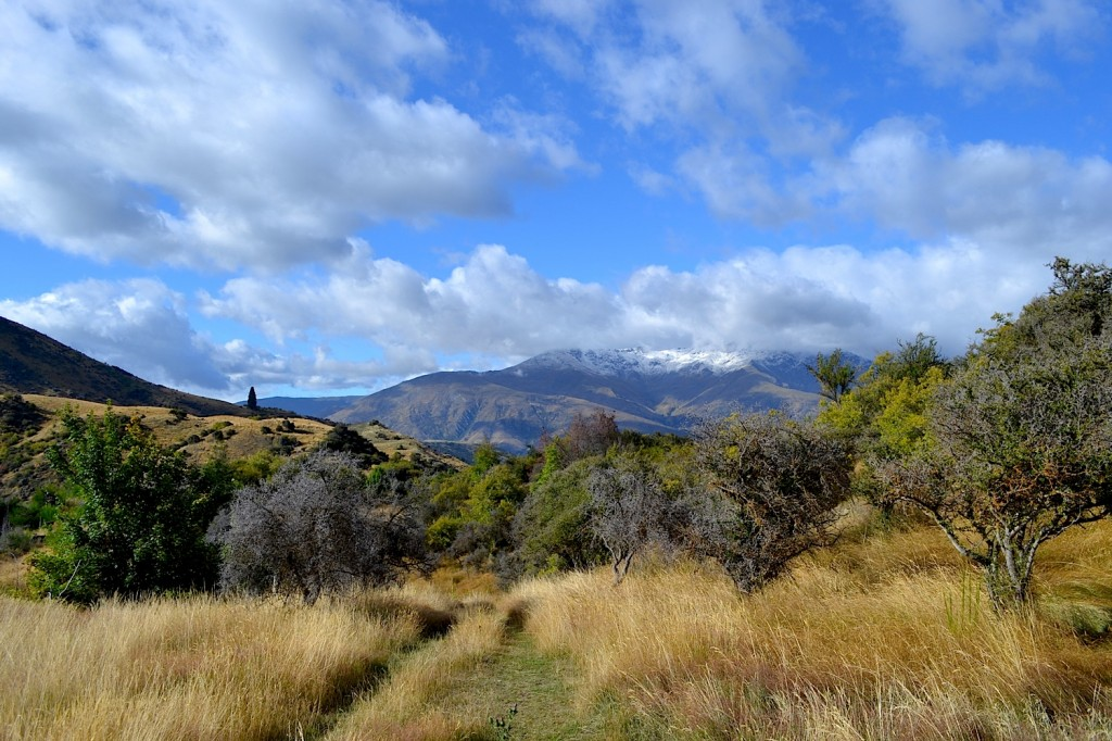 New Chum Gully Track, Arrowtown, New Zealand