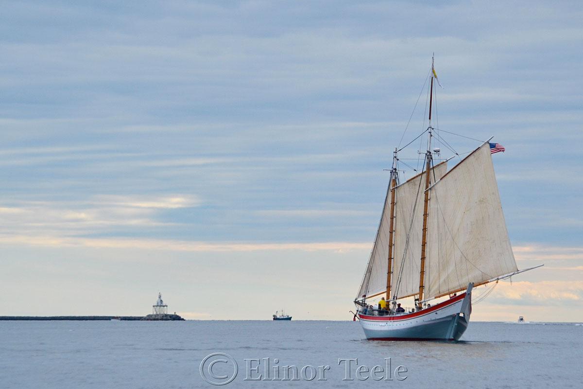 Ardelle at the Breakwater, Gloucester Harbor