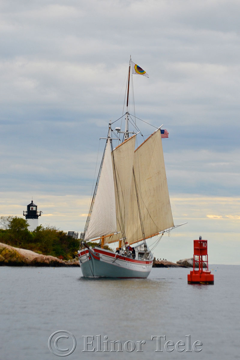 Ardelle Coming In, Gloucester Harbor