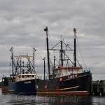 Orion and Lucy, Gloucester Harbor