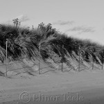 Black and White, Good Harbor Beach, Gloucester MA