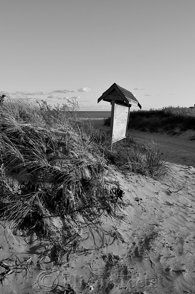 Black and White, Good Harbor Beach, Gloucester MA 2